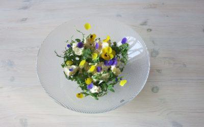 Grillad fläskfilé eller Oumph med blommig potatissallad